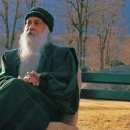 Why isn't India acting, ask Osho followers